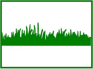 nurmi_logo